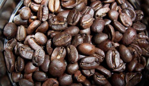 大人一人、10本のコーヒーの木が必要