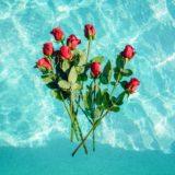 水に浮いた花