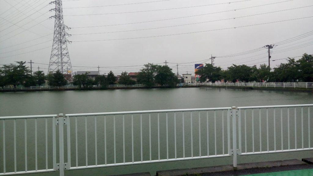 倉賀野の池