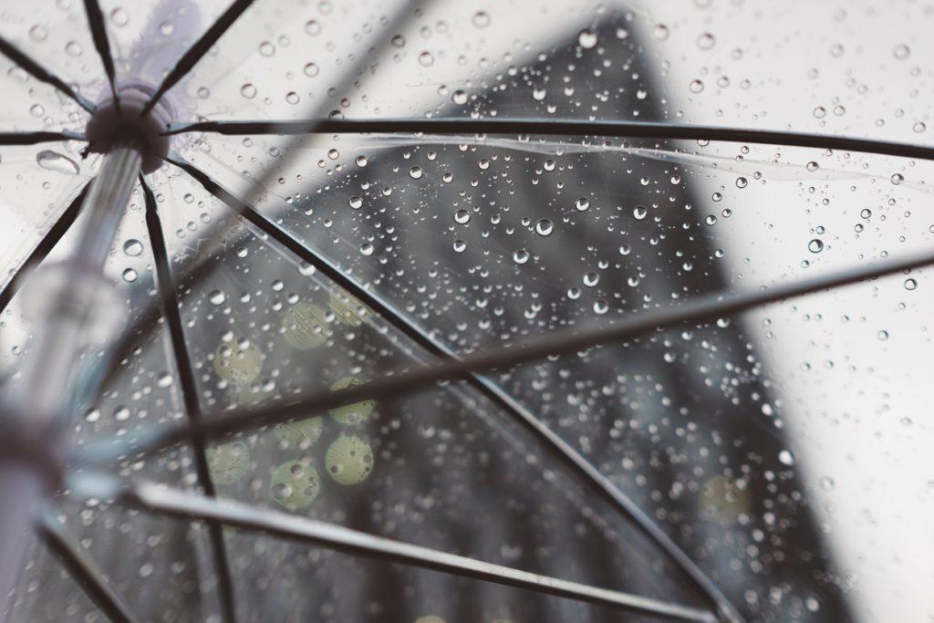 傘の上の写真