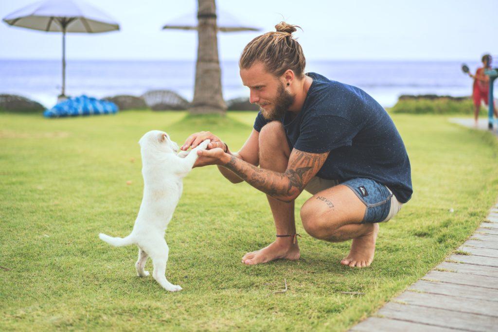 海辺で犬と遊ぶ欧米人