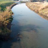 埼スタ周辺の川