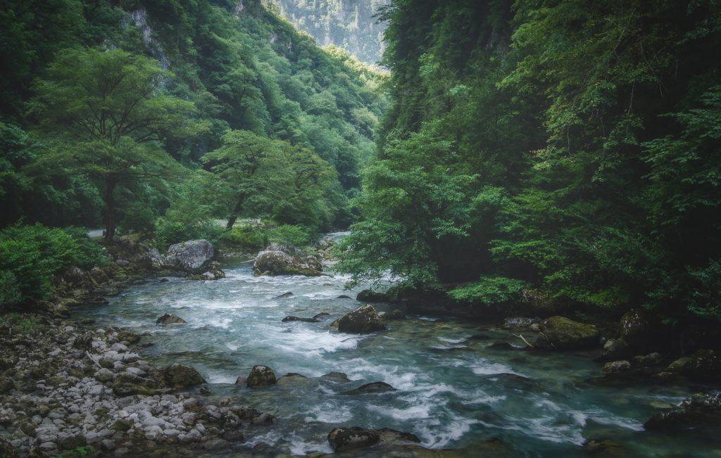 場所は知らないけど、キレイな川