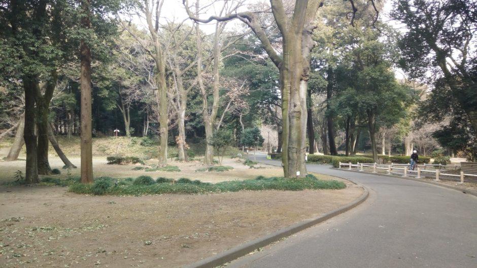 群馬の森の散歩コース