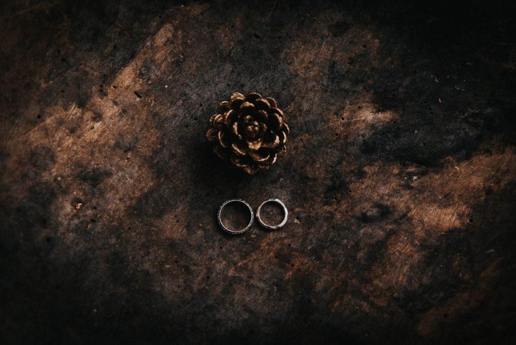 マツボックリとふたつの指輪