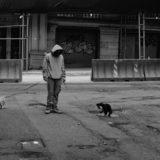 2匹の犬を散歩してる男性