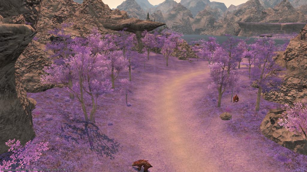 青霊岩とれる場所