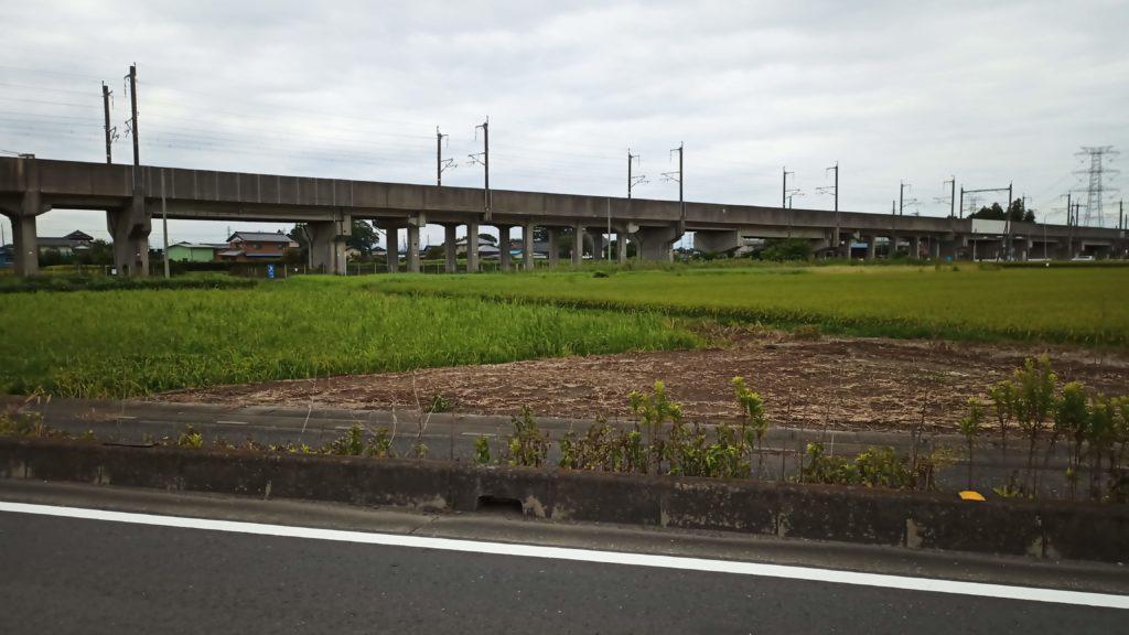 鴻巣の道路