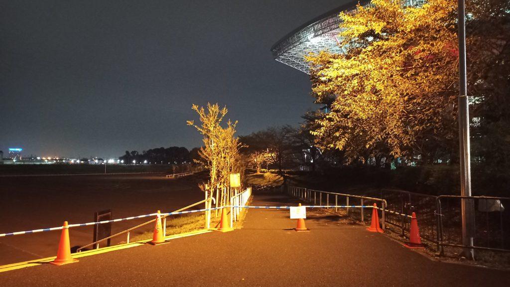 冠水後の埼スタ東駐車場