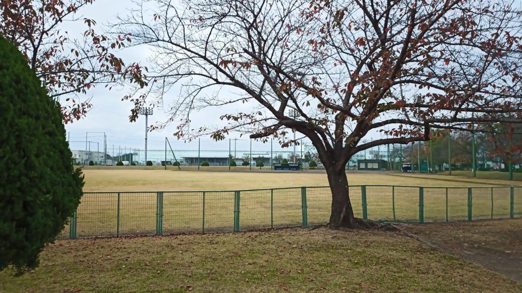 玉村総合公園2