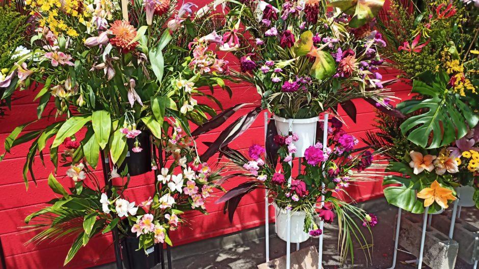 蒙古タンメン中本高崎店の開店祝いの花